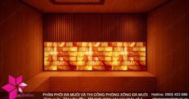 phong-xong-da-muoi-demo52