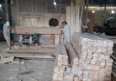 Dạo một vòng quanh xưởng sản xuất gỗ Muối Hồng Group